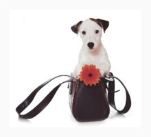 Jack Russell Terrier and a bag Kids Tee
