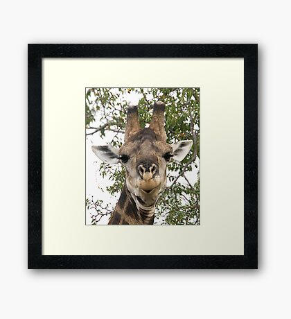Well It's Like This ... Framed Print