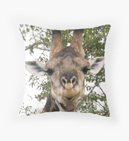 Well It's Like This ... Throw Pillow