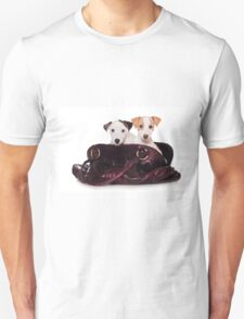 Two Jack Russell terrier puppy in a bag T-Shirt