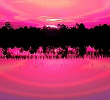 Hot Pink Sunset by Rosalie Scanlon