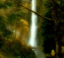 The Romance of Spring at the Falls by AdventureGuy
