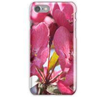 Pretty Pink Blossom iPhone Case/Skin
