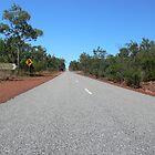 Sealed Road in Litchfield National Park, NT, Australia by Georg Friedrich