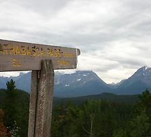 Athabasca Pass by Alyce Taylor