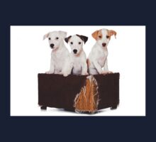 Three Jack Russell Terrier puppy and an old box Kids Tee