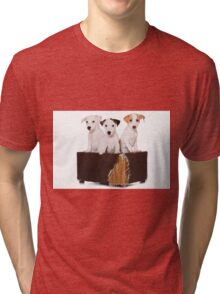 Three Jack Russell Terrier puppy and an old box Tri-blend T-Shirt