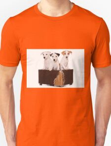 Three Jack Russell Terrier puppy and an old box Unisex T-Shirt