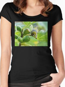 The Fig And Eye Women's Fitted Scoop T-Shirt