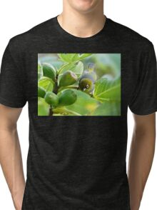 The Fig And Eye Tri-blend T-Shirt