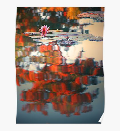 Lost in Reflections 3 Poster