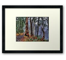 Ghosts In The Mist Revisited - The Great Alpine Road, Australia - The HDR Experience Framed Print