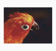 The Sound Of Colour - Sun Conure Kids Clothes