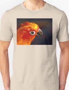The Sound Of Colour - Sun Conure Unisex T-Shirt