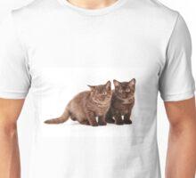 Two brown fluffy kitten Unisex T-Shirt