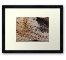 The Hidden Land - Up The Eternal Steps Framed Print