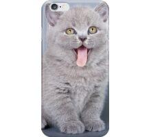 Gray fluffy kitten meows iPhone Case/Skin
