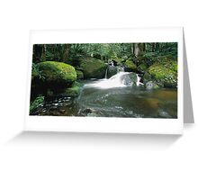 Taggerty Cascades Greeting Card
