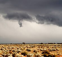 Approaching Storm  by outsider