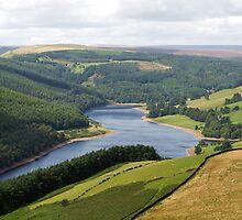 Along the Derwent Reservoir by Duncan Payne
