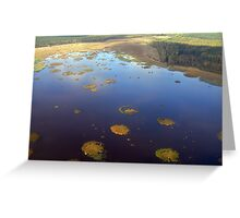 Marshy lake (The Baltic states) Greeting Card
