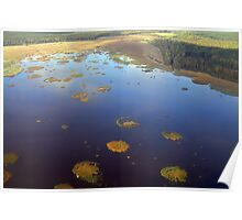 Marshy lake (The Baltic states) Poster