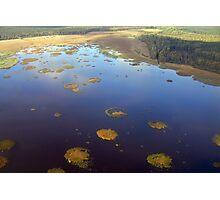 Marshy lake (The Baltic states) Photographic Print