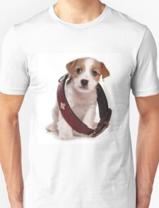 Jack Russell Terrier puppy and a large collar T-Shirt