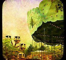 merry go round by Sonia de Macedo-Stewart