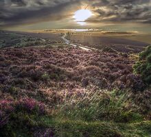 Sunset over Exmoor by Andy Morley