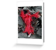 a flaming angel Greeting Card
