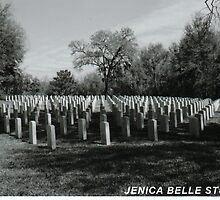 Veterans Affair by JenicaBelle
