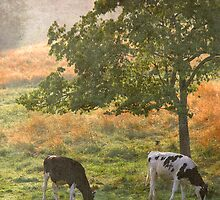 In the Pasture by Tibby Steedly
