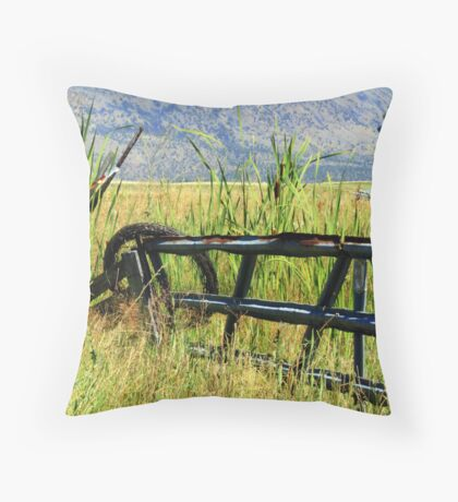 Wire and Fence Throw Pillow