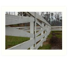 White Fence Art Print