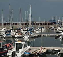SMALL BOATS BIG MASTS by andysax