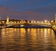 Paris Lights  by Lisa Williams