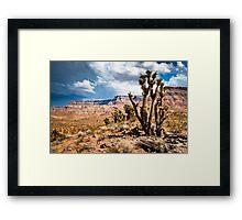 utah landscape Framed Print