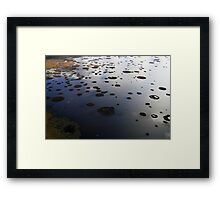 Marshy lake 2 (The Baltic states) Framed Print