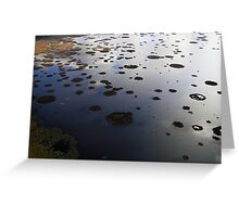 Marshy lake 2 (The Baltic states) Greeting Card