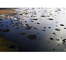 Marshy lake 2 (The Baltic states) Photographic Print