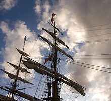 The tall ship Europa by Jon Lees