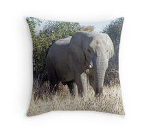 Elephant, Etosha National Park, Namibia Throw Pillow