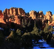 Late Day in Bryce Canyon by Terence Russell