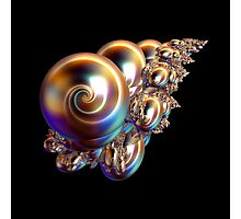 Golden Pearly Shells Photographic Print