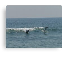 Playful Waves Canvas Print