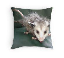 Three-Tailed Possum Throw Pillow