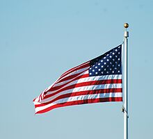 American Flag by Vonnie Murfin