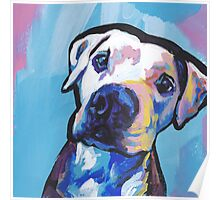 Pit bull Dog Bright colorful pop dog art Poster