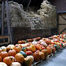 Inside of a Barn by Detlef Becher